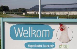 Kipster+wil+bedrijf+in+Belgi%C3%AB+opzetten