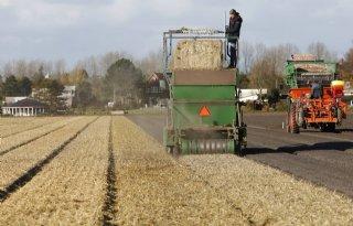 Bollensector+en+Rijnland+werken+aan+waterkwaliteit