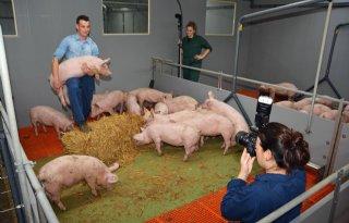 Dozijn+%27stoere+boeren%27+gefotografeerd+voor+goede+doel