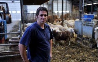 Boer+ziet+vraag+naar+schapenzuivel+stijgen