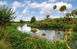 Gelderland+over+de+helft+met+natuuraankoop