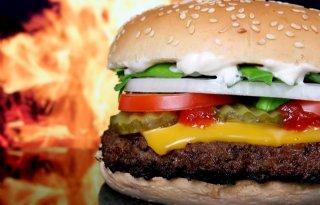 Hamburgerprijs+moet+40+procent+omhoog