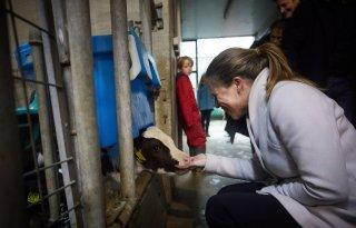 Schouten+wil+klimaatidee%C3%ABn+van+melkveehouder