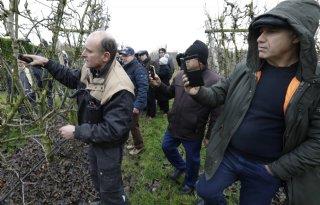 Iraniërs missen sinaasappeltelers in Nederland
