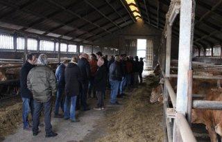 Vakgroep+Vleesvee+de+boer+op