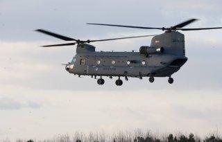 Legerhelikopters+jagen+vee+stuipen+op+lijf