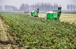 Waterschap+heeft+met+boeren+%27ogen+en+oren+in+de+polder%27
