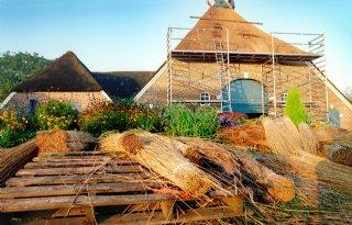 Code+rood+voor+rietgedekte+daken