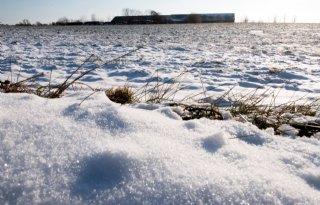 Door+kou+maand+uitstel+voor+verplichte+bodemanalyse