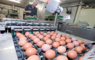 Buitengewoon+hoge+consumentenprijs+eieren