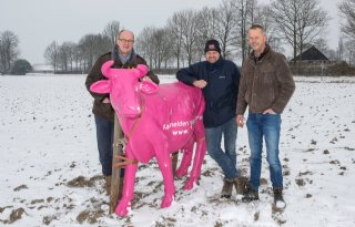 Nu+of+nooit+voor+glasvezel+Brabantse+Wal