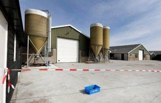 Acties in 'Roadmap' moeten gevolgen vogelgriep beperken