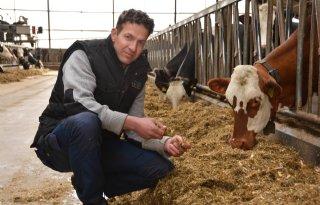 Beukeboom+stoot+jongvee+af+en+importeert+vee