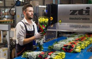 Sierteelt schenkt niet verkochte bloemen aan zorg
