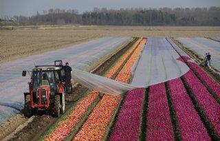 Grenzen+aan+agrarische+groei+in+zicht