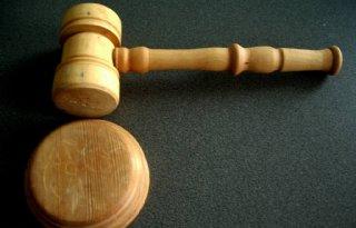 ZLTO+sleept+provincie+voor+rechter+om+veehouderijbeleid