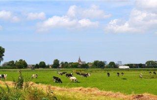 Boer+Midden%2DDelfland+scoort+met+kringlooplandbouw