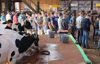 Nordwin+College+beoordeelt+vee+in+Oentsjerk