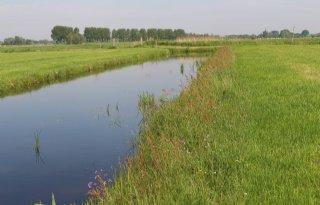 Utrecht+wil+band+stad%2C+land%2C+boer+en+consument+versterken