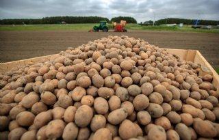 Aardappeltelers+dienen+klacht+in+tegen+reclame+Lidl