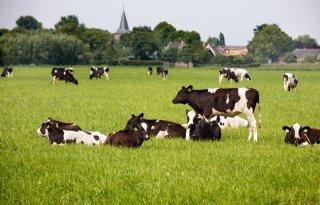 Beloning+voor+biodivers+boeren+in+Brabant