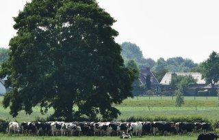 Stikstofclaim+sommeert+Gelderland+over+bijplussen+stikstofgevoelige+natuur