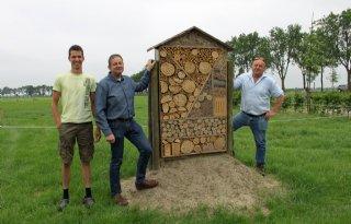 Bee+Deal+helpt+leefomgeving+bijen+te+verbeteren