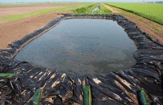 Aardappelmoeheid+reduceren+door+inundatie