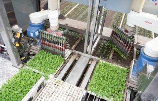Kabinet+steunt+duurzame+glastuinbouw+volop