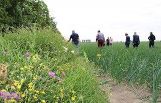 GreenBase+vergroot+biodiversiteit+Haarlemmermeer