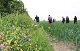 Akkerbouwers+Haarlemmermeer+gaan+voor+biodiversiteit