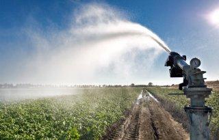 TV: LTO komt met fors crisispakket voor droogte