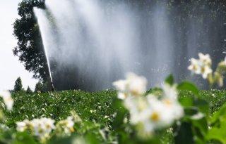 Waterschap+verbiedt+gebruik+oppervlaktewater+Achterhoek