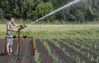 Verbod+op+grondwateronttrekking+bij+natuur
