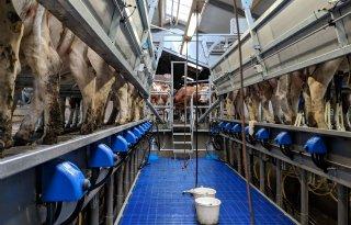 Melksysteem+zonder+melkklauw
