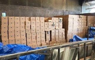 Melkveehouder+stalt+duizenden+blikken+gestolen+babyvoeding