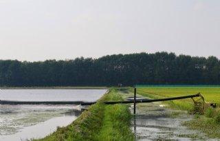 Rijnland+praat+kwekers+bij+over+droogte