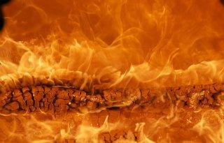 TV: Veehouder aan zet in actieplan stalbranden