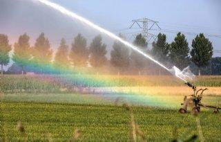Boeren+in+Noordwaard+mogen+weer+beregenen