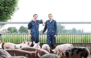 'Mensen laten beleven hoe geweldig onze varkens zijn'