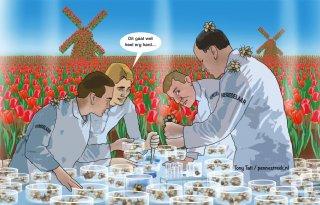 Veredelingstijd tulp meer dan gehalveerd