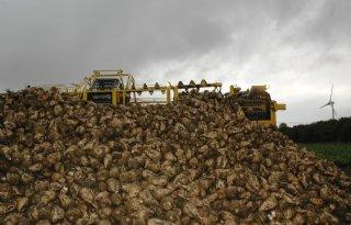 Suikerfabriek+laat+restwater+naar+boeren+stromen