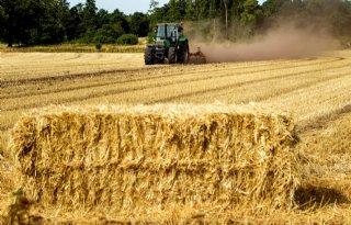 Boeren+zoeken+naar+rendement+uit+oude+es