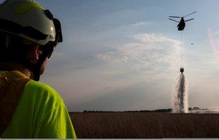 Droogte verdubbelt aantal natuurbranden
