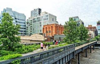 'Groene Stad gaat om bewustwording'