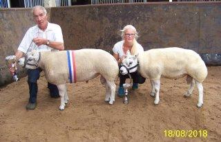 Zomerman+en+Postma+winnen+schapenkeuring