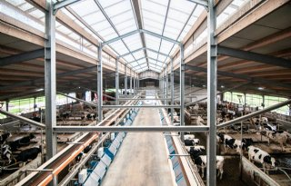 Meer duurzame stallen in Nederland