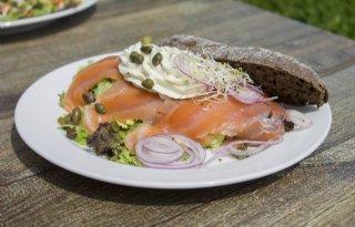 Nederlander+wil+ook+voor+vis+beter+welzijn