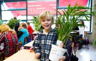 Proef+met+planten+in+klas+van+start