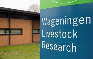 VIC+Sterksel+stopt%2C+maar+varkensonderzoek+blijft